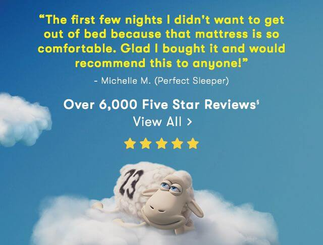 serta review banner
