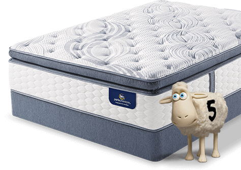 Discover the Perfect Night of Sleep Sertacom Perfect Sleeper