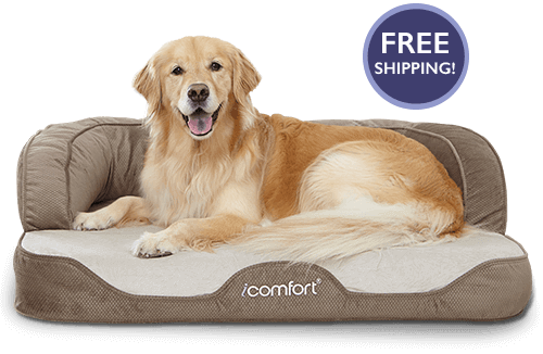 Sertapedic Gel Memory Foam Dog Bed